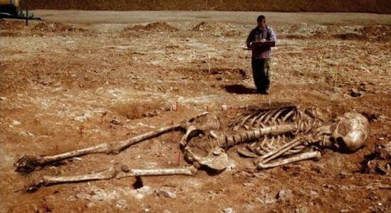 Американският Смитсонион е унищожил хиляди скелети на великани, високи до 4 метра