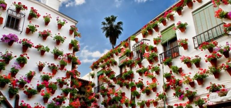 Празникът за душата – фестивалът на цветята в Кордоба (снимки)