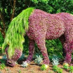Удивителни произведения на изкуството от подстригани растения (снимки)