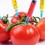 Американски професор: ГМО ще унищожат живота на Земята