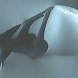 Извънземен звездолет в Земята на Кралица Мод – Антарктида? (снимки, видео)