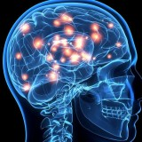 Храни и добавки отравят мозъка ни. Ето кои са