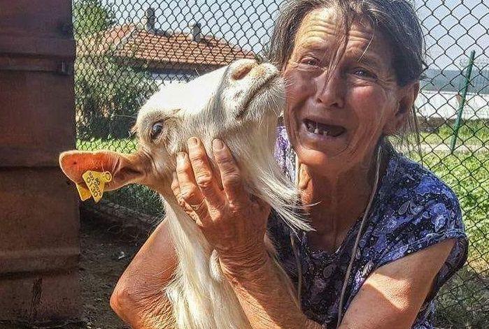Погром на здрави животни в Ямболско, световната мафия иска да ядем пластмасовите им боклуци ( видео)