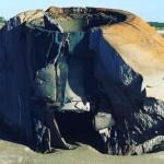 Океанът изхвърли загадъчен обект на остров в Южна Каролина, САЩ