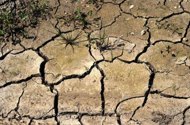 В държавата на калинките скоро ще видим големи групи водно бедни хора