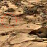 Поредна снимка на НАСА с човешка фигура на Марс (видео)