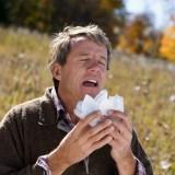 Легенди и истини за простудните заболявания