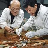 24-метров древен саркофаг откриха строителни работници в Китай (видео)