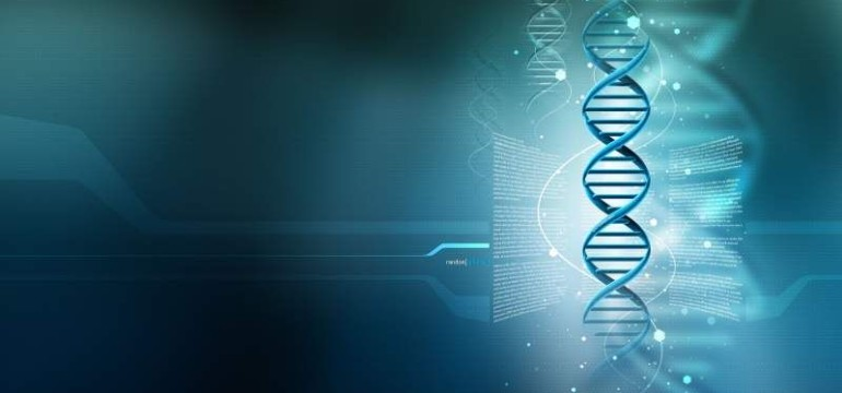 US компания помести цялата Уикипедия в…молекула на ДНК